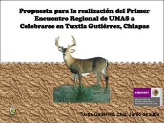 Tuxtla Gutiérrez, Chis. Junio de 2009