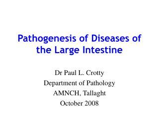 Pathogenesis of Diseases of the Large Intestine