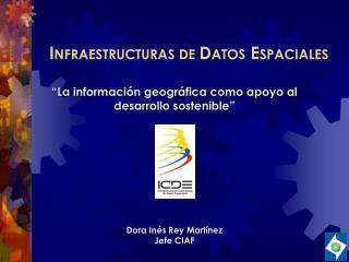 I NFRAESTRUCTURAS DE  D ATOS  E SPACIALES