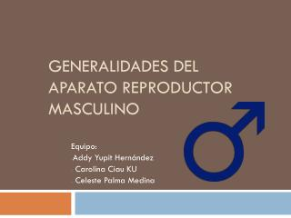 Generalidades del aparato reproductor masculino