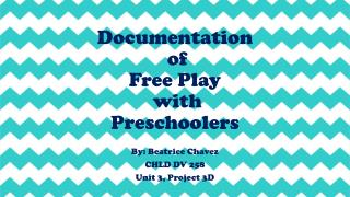 Documentation  of  Free Play  with  Preschoolers