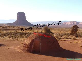 A Day Of The Navajo