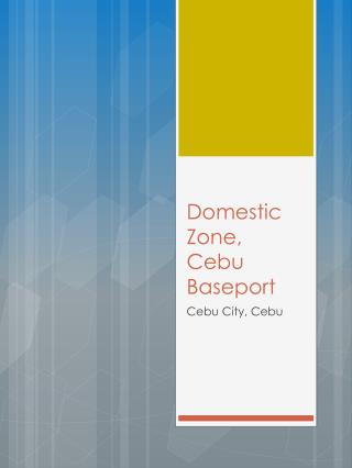 Domestic Zone, Cebu  Baseport