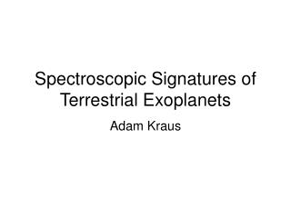 Spectroscopic Signatures of Terrestrial Exoplanets