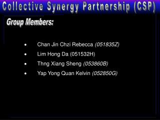 Collective Synergy Partnership (CSP)