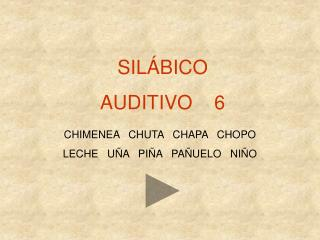 SILÁBICO AUDITIVO    6