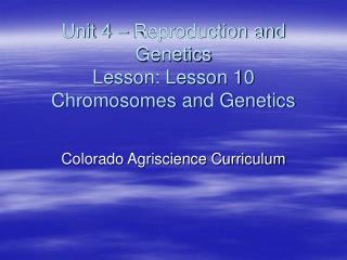 Unit 4   Reproduction and Genetics Lesson: Lesson 10 Chromosomes and Genetics