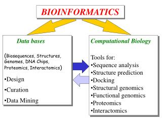 Data bases ( Biosequences, Structures, Genomes, DNA Chips, Proteomics, Interactomics ) Design
