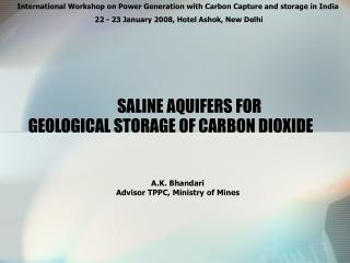 GEOLOGICAL STORAGE OF CARBON DIOXIDE