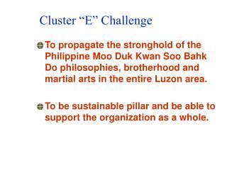 "Cluster ""E"" Challenge"