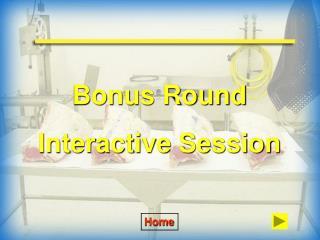 Bonus Round Interactive Session