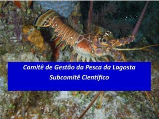 Comitê de Gestão da Pesca da Lagosta Subcomitê Científico