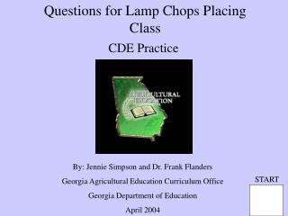 Questions for Lamp Chops Placing Class