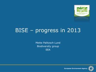 BISE – progress in 2013