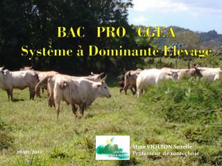 BAC   PRO   CGEA  S ystème  à  Dominante  E levage