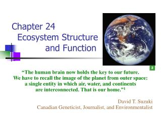 Chapter 24     Ecosystem Structure              and Function