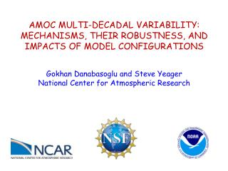 AMOC MULTI-DECADAL VARIABILITY: MECHANISMS, THEIR ROBUSTNESS, AND IMPACTS OF MODEL CONFIGURATIONS