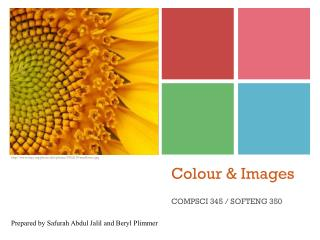 Colour & Images
