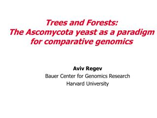 Trees and Forests: The Ascomycota yeast as a paradigm for comparative genomics