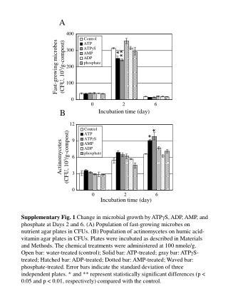 Control ATP ATP g S AMP ADP phosphate