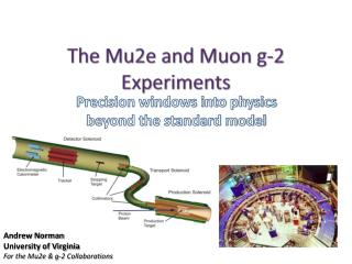 The Mu2e and Muon g-2 Experiments