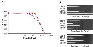 Oxacillin 0 – 250 mg/l