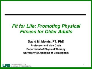 Fit for Life: Promoting Physical Fitness for Older Adults