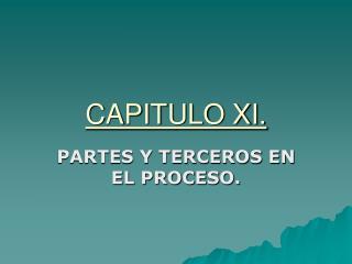 CAPITULO XI.
