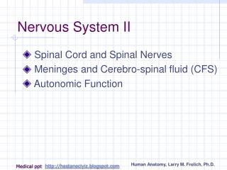 Nervous System II