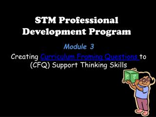 STM Professional Development Program