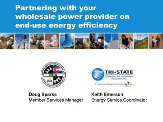 Partnering with your wholesale power provider on end-use energy efficiency