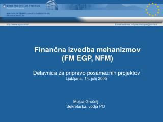 Finančna izvedba mehanizmov (FM EGP, NFM)