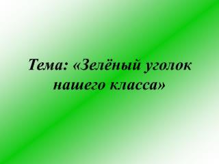 Тема: «Зелёный уголок нашего класса»