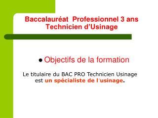 Baccalaur�at  Professionnel 3 ans Technicien d�Usinage