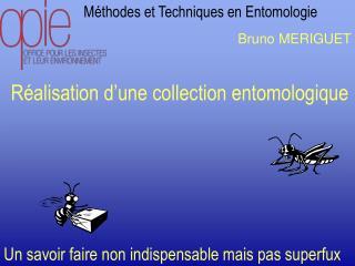 Méthodes et Techniques en Entomologie