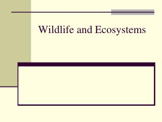 Wildlife and Ecosystems