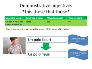 Demonstrative adjectives *this these that those*