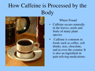 How Caffeine is Processed by the Body