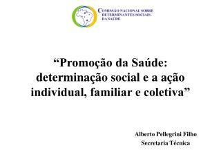 �Promo��o da Sa�de: determina��o social e a a��o individual, familiar e coletiva�