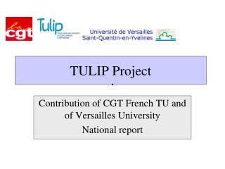 TULIP Project