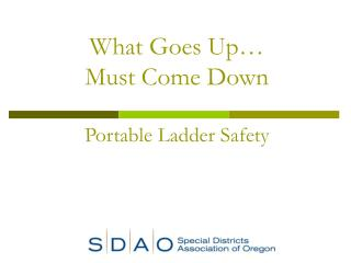 What Goes Up  Must Come Down  Portable Ladder Safety