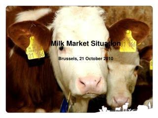Milk Market Situation Brussels, 21 October 2010