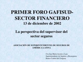 PRIMER FORO GAFISUD-SECTOR FINANCIERO 13 de diciembre de 2002