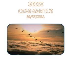 GEESE     CEAE-SANTOS 16/07/2011