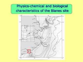 Physico-chemical and biological characteristics of the Blanes site