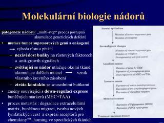 Molekulární biologie nádorů
