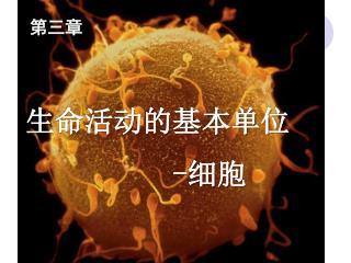 生命活动的基本单位 - 细胞