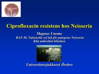 N. meningitidis