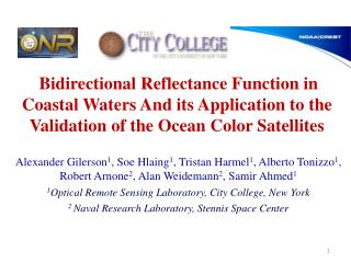 Bidirectional Reflectance Distribution Function ( BRDF )