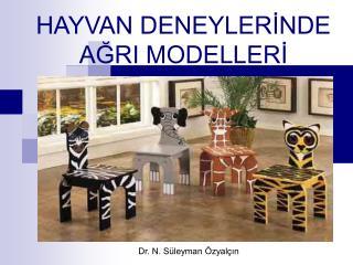 HAYVAN DENEYLERİNDE AĞRI MODELLERİ